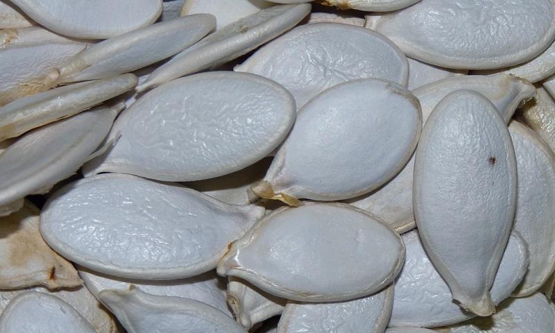 семя тыквы от простатита