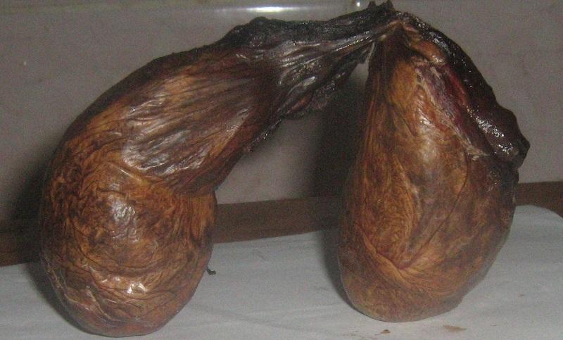 Сушеная бобровая струя, применяемая в лечении простатита