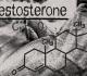 Тестостерон и потенция